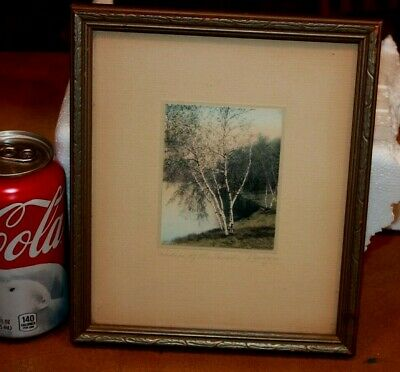 Sawyer Ladies of The Woods White Birch Photo Print Framed Signed
