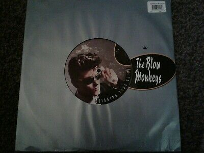 "The Blow Monkeys - Digging Your Scene - 12"" Single - VG+"