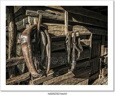 Antique Horse Tack Art/Canvas Print. Poster, Wall Art, Home Decor - C