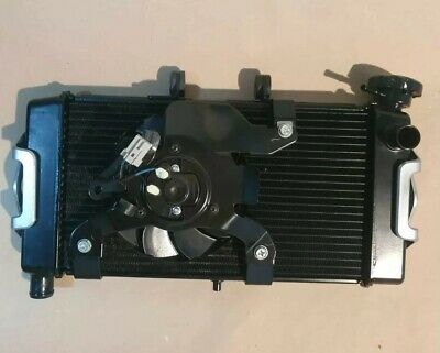 2017 Honda Nc750X Radiator + Cooling Fan + Evotech Guard