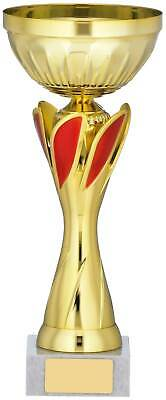 PRESENTATION CUP SILVER /& RED DANCE AWARD TROPHY FREE ENGRAVING CP330.11