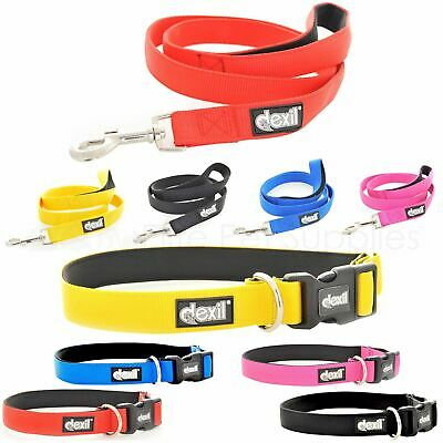 Dexil Padded Dog Lead or Collar 4 6 Foot Neoprene Elite Range