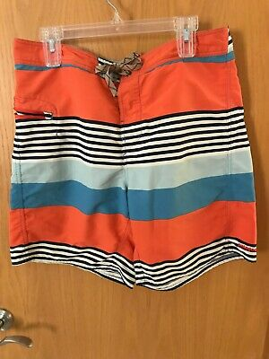Patagonia Men's Striped, Size 36 Board Shorts
