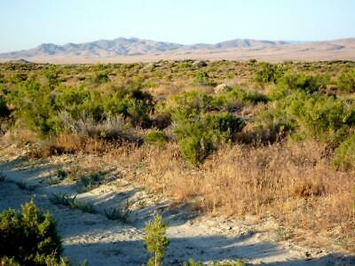 $199 Down - $149/ Mo. For 40+ Acre Ranch - Staked & Surveyed - No Qualify Terms