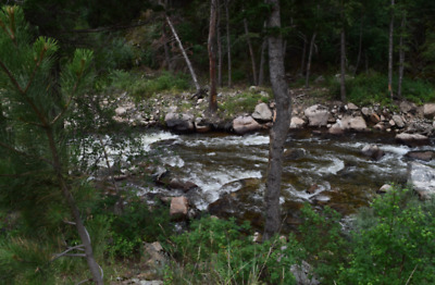 ✅20 Acre ✅🚩Boulder  County Colorado 🚩Gold Mining Claim Placer💰