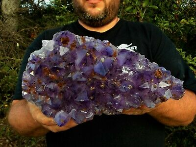 Amethyst Crystal Cluster Stand with Cacoxenite Display Specimen Cathedral Brazil