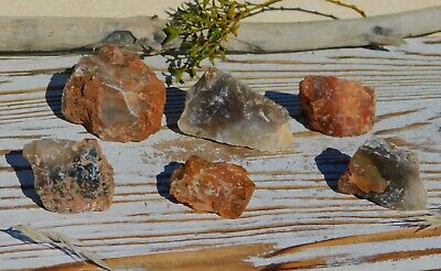 Agate Lot Natural Rough Stones from Nevada for Tumbling Lapidary or Collection