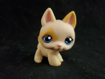 Authentic littlest pet shop lps german shepherd dog 1169