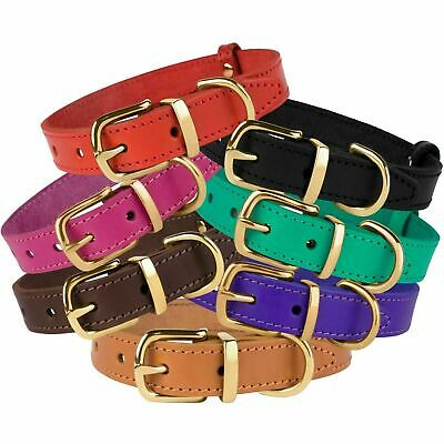 BRONZEDOG®  Leather Dog Collar For Cat Puppy Pet Classic XS S M L XL