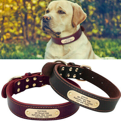 Genuine Leather Dog Collar with Name Plate for Large Dogs Personalized Brown Red