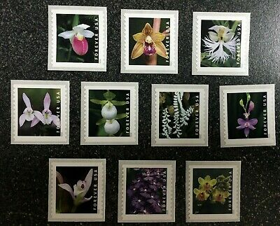2020USA Forever Wild Orchids - Set of 10 Coil Singles  Mint  flowers