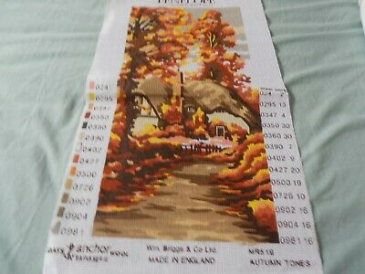 """Penelope 'Autumn Tones'  Tapestry Canvas  9""""x 19.""""  CANVAS ONLY NEW - FABULOUS"""