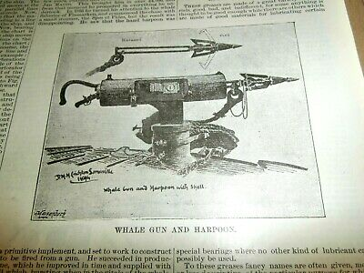 1895 Whale Gun And Harpoon Steam Whaling Report