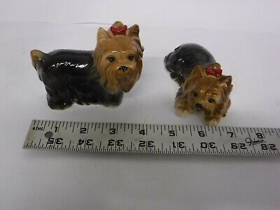 Yorkshire Terrier Yorkie Dog 2 Piece Collection