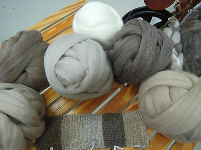 Wool NATPAK Natural coloured West Aust DreameeTops Roving 200g Spin or Felt.
