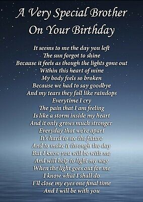 Special Brother Birthday Memorial Graveside Poem Card & Ground Stake F408