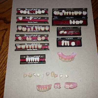 Denture Teeth Portrait IPN Dentsply Trubyte Newtek Miscellaneous Lot Some Loose