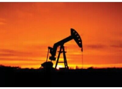 Oil And Gas Mineral Rights Covering 80 Acres Of Florida Land. Mineral Rights Onl