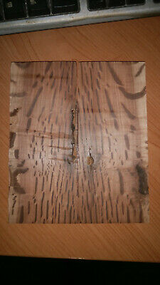 Hairy Oak Knife Scales Book Matched
