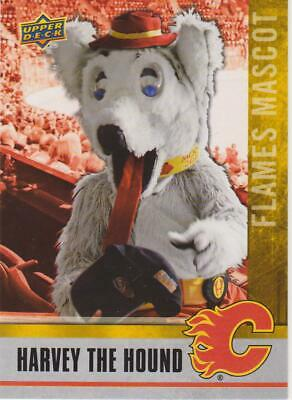 2020 Ud National Hockey Card Day Harvey The Hound Mascot Flames # M-7 !