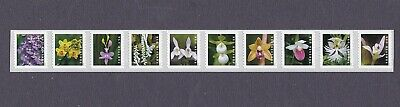 Coil Strip (10) 55c Forever Wild Orchids MNH, F-VF  Scott Order Mailed Flat