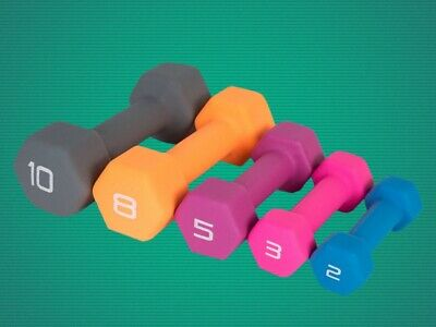 2/3/5/8/10/15 Lbs Hex Dumbbell Pounds Lb Weight Fitness Curls Workout Equipment