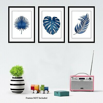 Botanical Prints Blue Monstera Leaf Fern Plant Picture Print Wallart A4 Set of 3