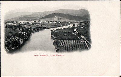 Tasmania New Norfolk River Early View Postcard