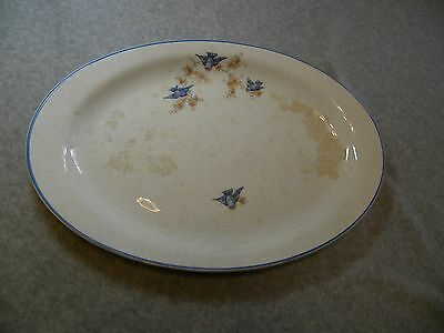 Homer Laughlin Bluebird China Platter Oval Vintage Serving Small Scarce