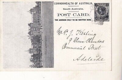 VINTAGE POSTCARD     EARLY RARE COMMONWEALTH SOUTH AUSTRALIA 1900s