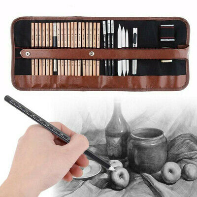 29Pc Professional Sketching Drawing Set Art Pencil Kit Artists Graphite Charcoal