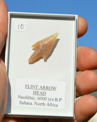 ANCIENT, STONE AGE ARROWHEAD...NEOLITHIC...6000 years old!! in display box.