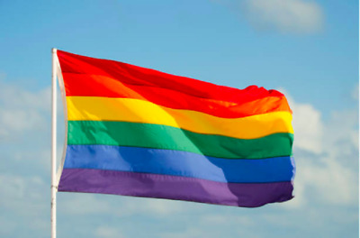 SUPPLY PPE NHS Charity Thank You NHS RAINBOW FLAG House Flag 3FT X 2FT