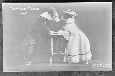 Dressed Dogs on a Date; RPPC Photo Postcard 1907 by C.M. Nelson, Excellent