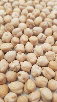 Chickpeas 8mm 25 kg. High Quality. Argentinian Chick peas