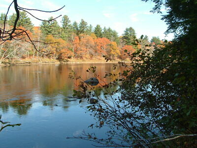 Maine water front 8.5 acres land river timber Owner financing trades considered