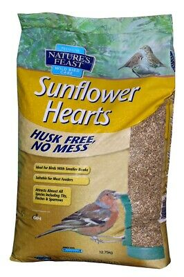 Nature's Feast Sunflower Hearts Wild Bird Food | Birds