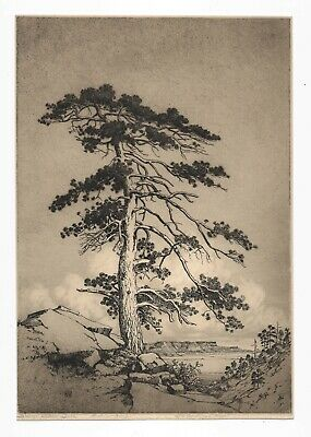 """The Sentinel Pine"" Original Signed Southwest Etching by George Elbert Burr-1916"