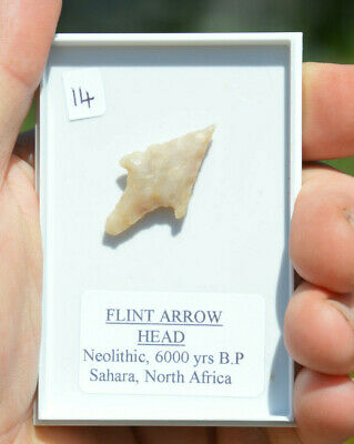 BEAUTIFUL GENUINE  ANCIENT,  stone age NEOLITHIC ARROWHEAD  6000 years old!!