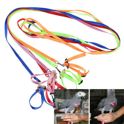 Pet Parrot Bird Harness Leash Outdoor Adjustable Training Rope Anti Bite FlyBand
