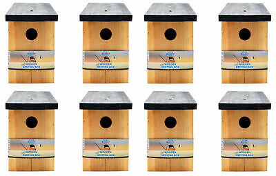 8 x Pressure Treated Wooden Bird House Nesting Box Simply Direct