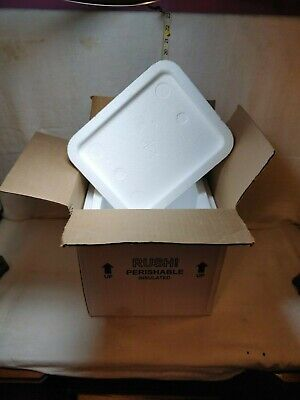Styrofoam Insulated Cooler Shipping Container - With Box - 12.5 x 11.5 x 9.5