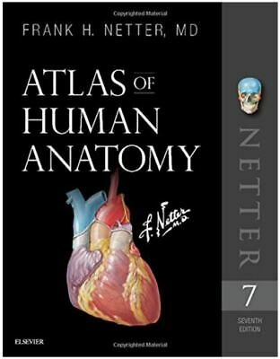 Atlas of Human Anatomy By Frank H. Netter ✅ 🔥P-D-F🔥