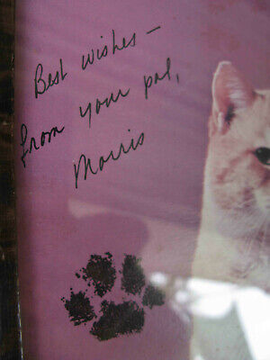 Morris The Cat (RIP) 9 Lives Advertising MUST READ! Sign Photo 1970' By Tom Cat