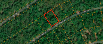 **1/4 Acre Undeveloped Wooded Missouri Lot! No Reserve! Warranty Deed!**