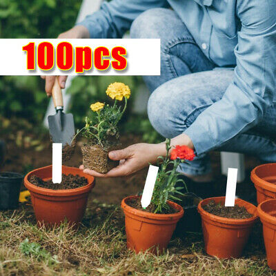 100Pcs Garden Plant Pot Markers Plastic Stake Tags Yard Court Nursery N0A9 L4D5