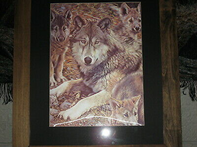 Amazing 3 Dimensional Wolf Picture ....  Large 20 x 24