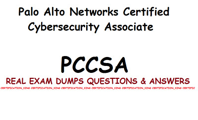 PCCSA Palo Alto Networks Certified Cybersecurity Associate real Exam dumps