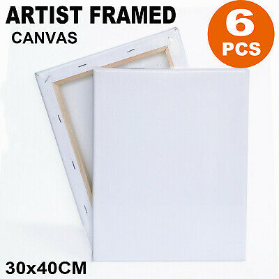 6 Pack 30 X 40Cm Blank Plain Stretched Painting Art Acrylic Canvas White Set