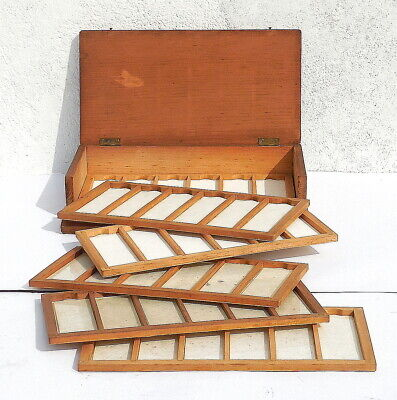 Antique C19th 6-Drawer Wooden MICROSCOPE SLIDES Scientific Collector's Box c1890